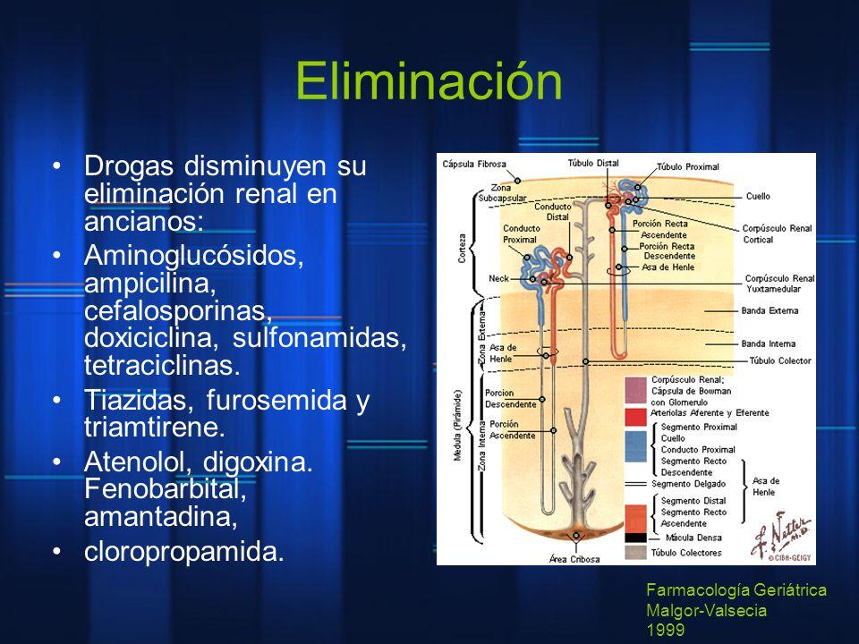 Eliminación Drogas disminuyen su eliminación renal en ancianos: Aminoglucósidos, ampicilina, cefalosporinas, doxiciclina, sulfonamidas, tetraciclinas.