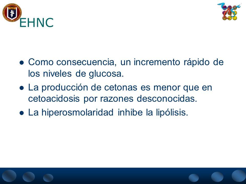 EHNC Como consecuencia, un incremento rápido de los niveles de glucosa. La producción de cetonas es menor que en cetoacidosis por razones desconocidas