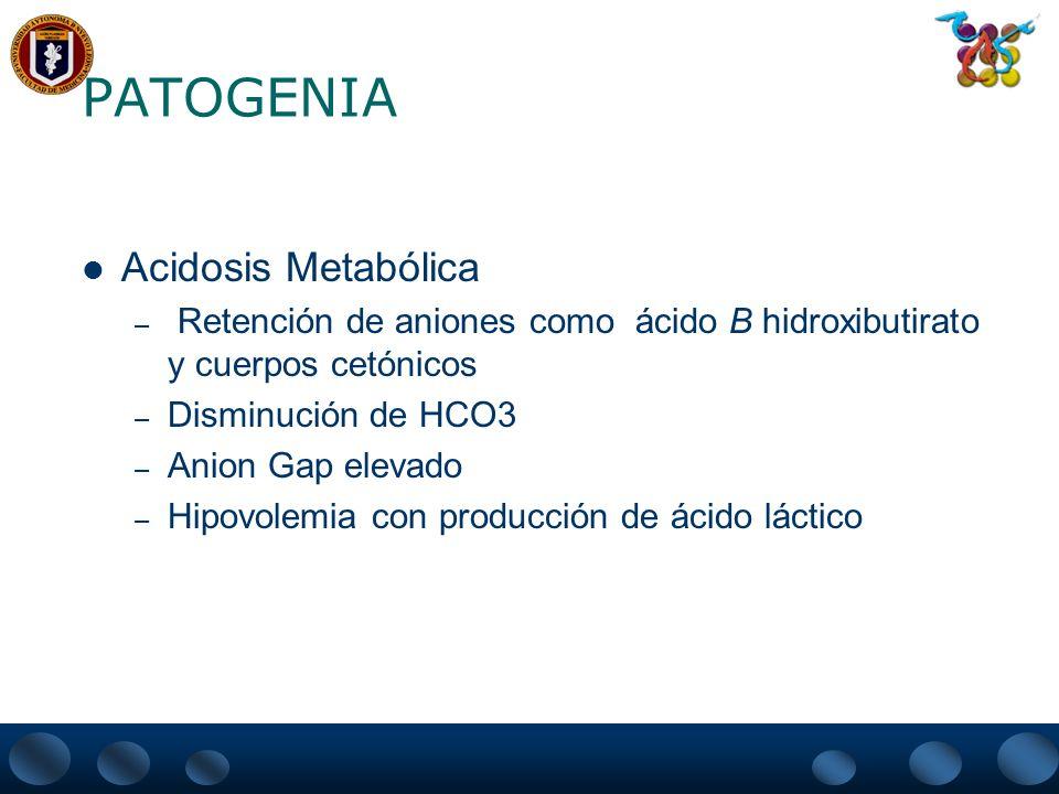 PATOGENIA Acidosis Metabólica – Retención de aniones como ácido B hidroxibutirato y cuerpos cetónicos – Disminución de HCO3 – Anion Gap elevado – Hipo