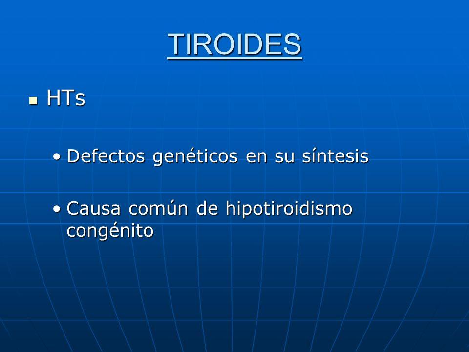 TIROIDES HTs HTs Defectos genéticos en su síntesisDefectos genéticos en su síntesis Causa común de hipotiroidismo congénitoCausa común de hipotiroidis