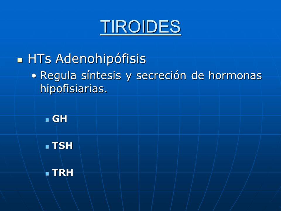 TIROIDES HTs Adenohipófisis HTs Adenohipófisis Regula síntesis y secreción de hormonas hipofisiarias.Regula síntesis y secreción de hormonas hipofisia