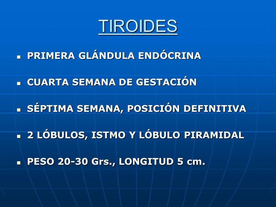TIROIDES RIA Valores normales de hormonas tiroideas RIA Valores normales de hormonas tiroideas T4 t 4.5 - 12.0 ug/dlT4 t 4.5 - 12.0 ug/dl T3 t 85.0 - 180.0 ng/dlT3 t 85.0 - 180.0 ng/dl T4 libre 0.8 - 2.0 ng/dlT4 libre 0.8 - 2.0 ng/dl TSH 0.3 - 4.5 uUI/mlTSH 0.3 - 4.5 uUI/ml