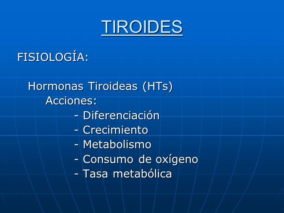 TIROIDES FISIOLOGÍA: Hormonas Tiroideas (HTs) Acciones: Acciones: - Diferenciación - Crecimiento - Metabolismo - Consumo de oxígeno - Tasa metabólica
