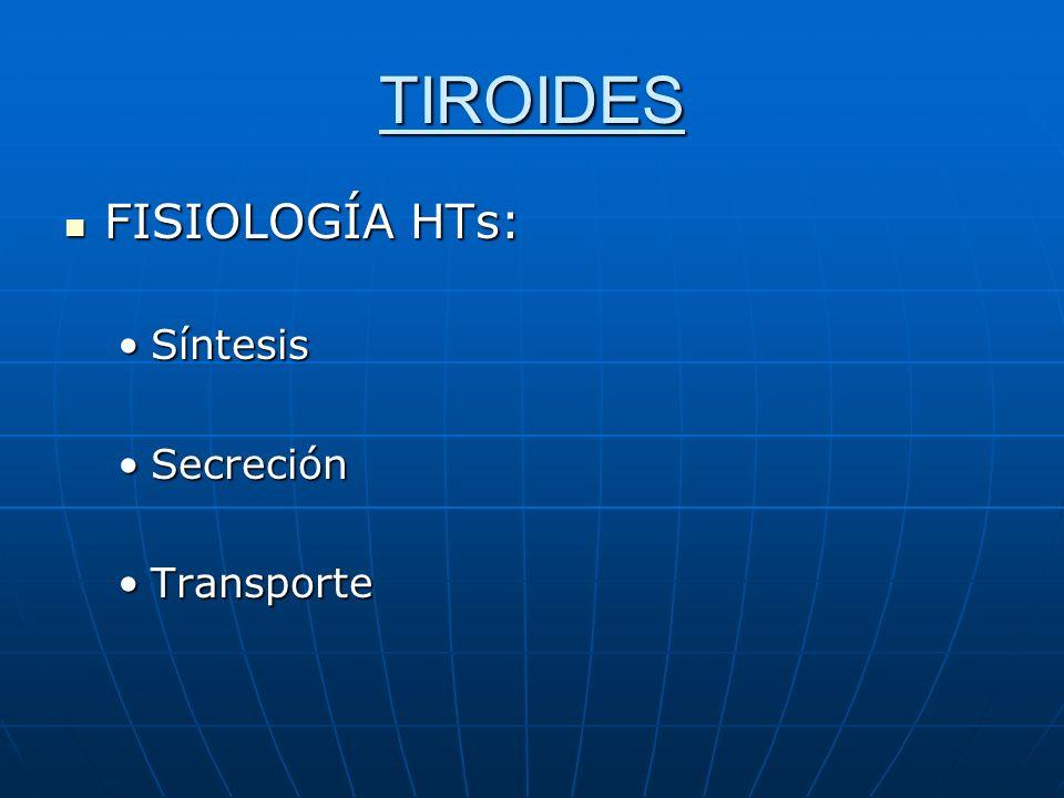 TIROIDES NORMAL CAPTACION A LAS 24 HRS 25%