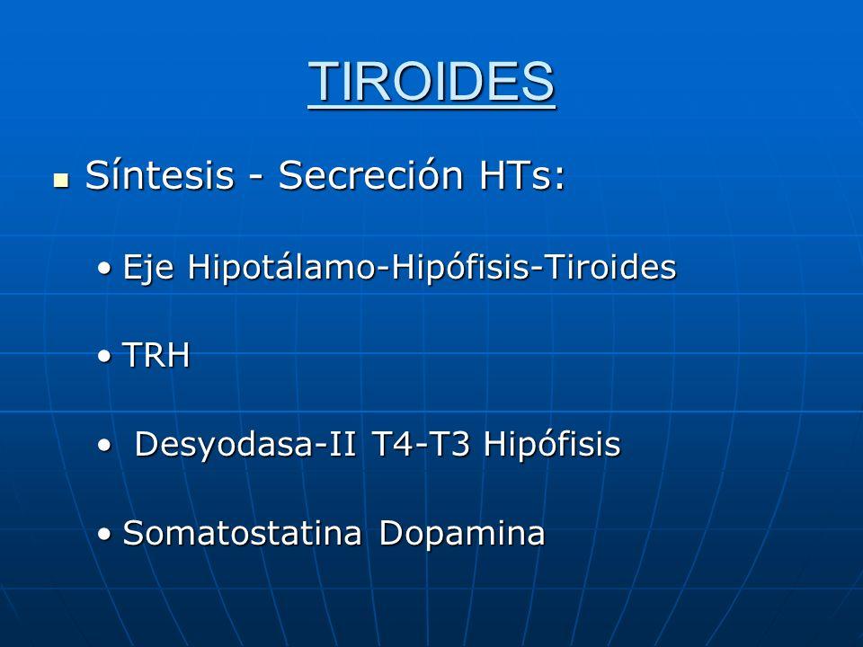 TIROIDES Síntesis-Secreción HTs Síntesis-Secreción HTs Principal regulador de secreción TSHPrincipal regulador de secreción TSH DesarrolloDesarrollo CrecimientoCrecimiento TSHr- Acoplado a Gs-AMPcTSHr- Acoplado a Gs-AMPc Autoanticuerpos- vs -TSHr-GravesAutoanticuerpos- vs -TSHr-Graves