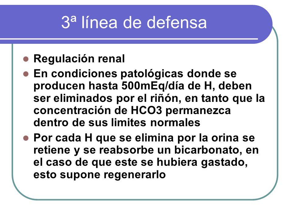 3ª línea de defensa Regulación renal En condiciones patológicas donde se producen hasta 500mEq/día de H, deben ser eliminados por el riñón, en tanto q