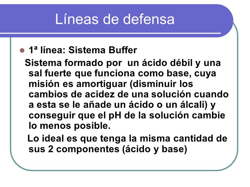 Líneas de defensa 1ª línea: Sistema Buffer Sistema formado por un ácido débil y una sal fuerte que funciona como base, cuya misión es amortiguar (dism