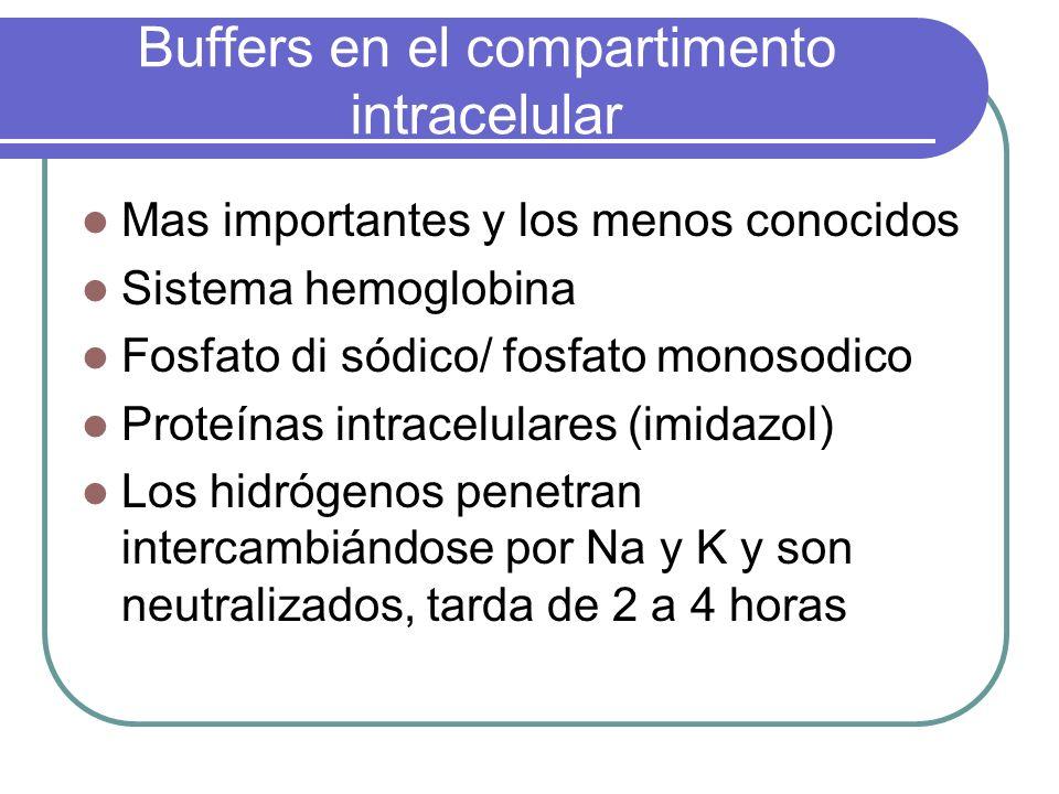 Buffers en el compartimento intracelular Mas importantes y los menos conocidos Sistema hemoglobina Fosfato di sódico/ fosfato monosodico Proteínas int