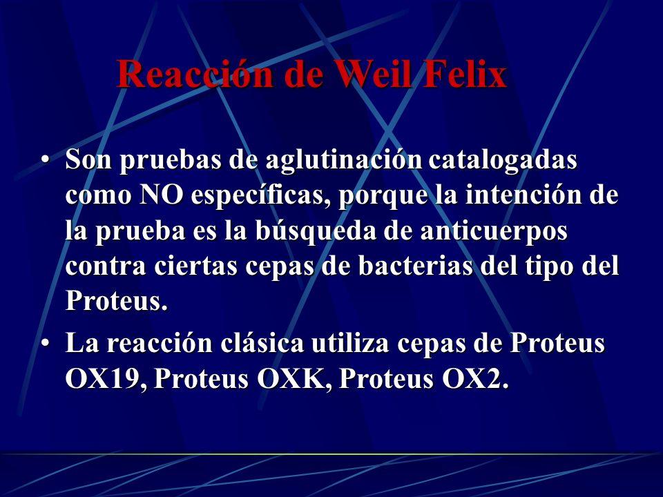 Reacción de Weil Felix Son pruebas de aglutinación catalogadas como NO específicas, porque la intención de la prueba es la búsqueda de anticuerpos con