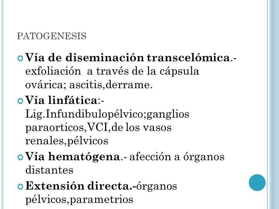 PATOGENESIS Vía de diseminación transcelómica.- exfoliación a través de la cápsula ovárica; ascitis,derrame. Vía linfática :- Lig.Infundibulopélvico;g