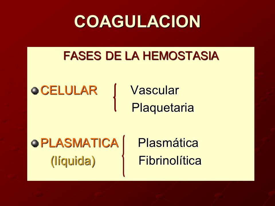 COAGULACION FASES DE LA HEMOSTASIA CELULAR Vascular Plaquetaria Plaquetaria PLASMATICA Plasmática (líquida) Fibrinolítica (líquida) Fibrinolítica