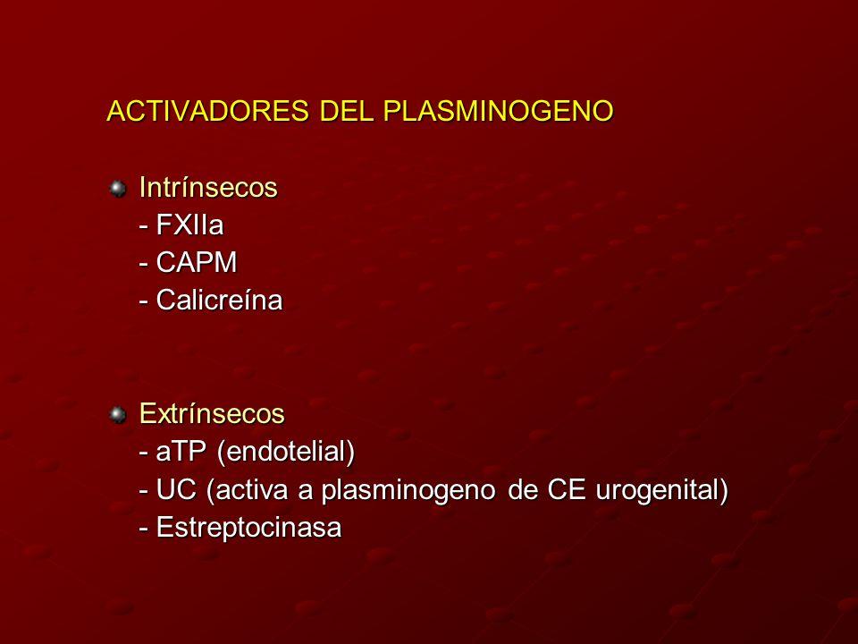 ACTIVADORES DEL PLASMINOGENO Intrínsecos - FXIIa - CAPM - Calicreína Extrínsecos - aTP (endotelial) - UC (activa a plasminogeno de CE urogenital) - Es