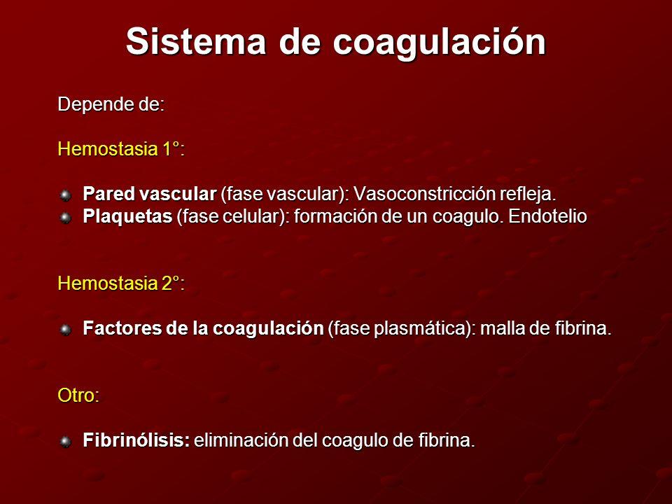 Sistema de coagulación Depende de: Hemostasia 1°: Pared vascular (fase vascular): Vasoconstricción refleja. Plaquetas (fase celular): formación de un