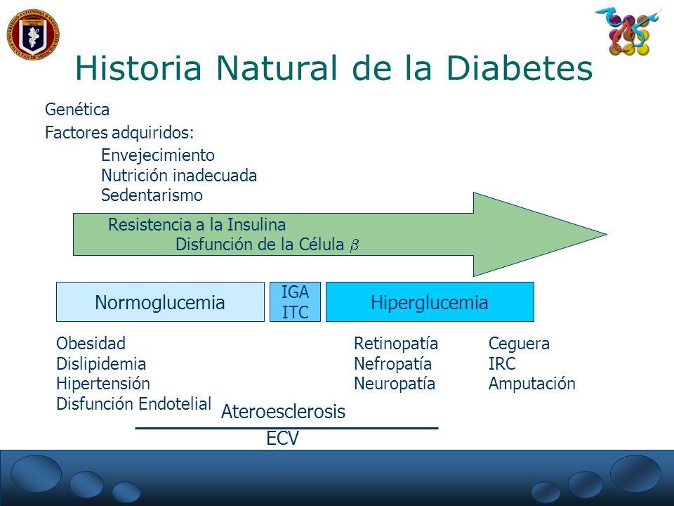 Complicaciones Crónicas de la Diabetes Mellitus Tipo 1 Retinopatía.