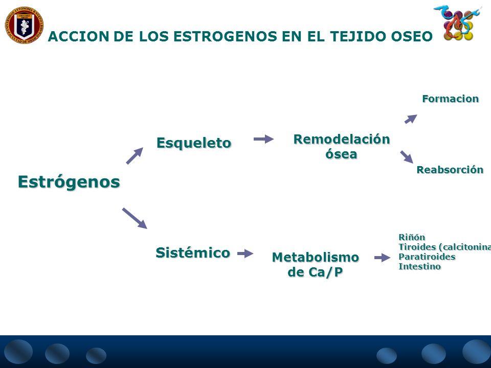 PRINCIPALES INDICACIONES DE LA TRH Tratamiento de los síntomas menopáusicos Prevención y tratamiento de la atrofia urogenital Prevención y tratamiento