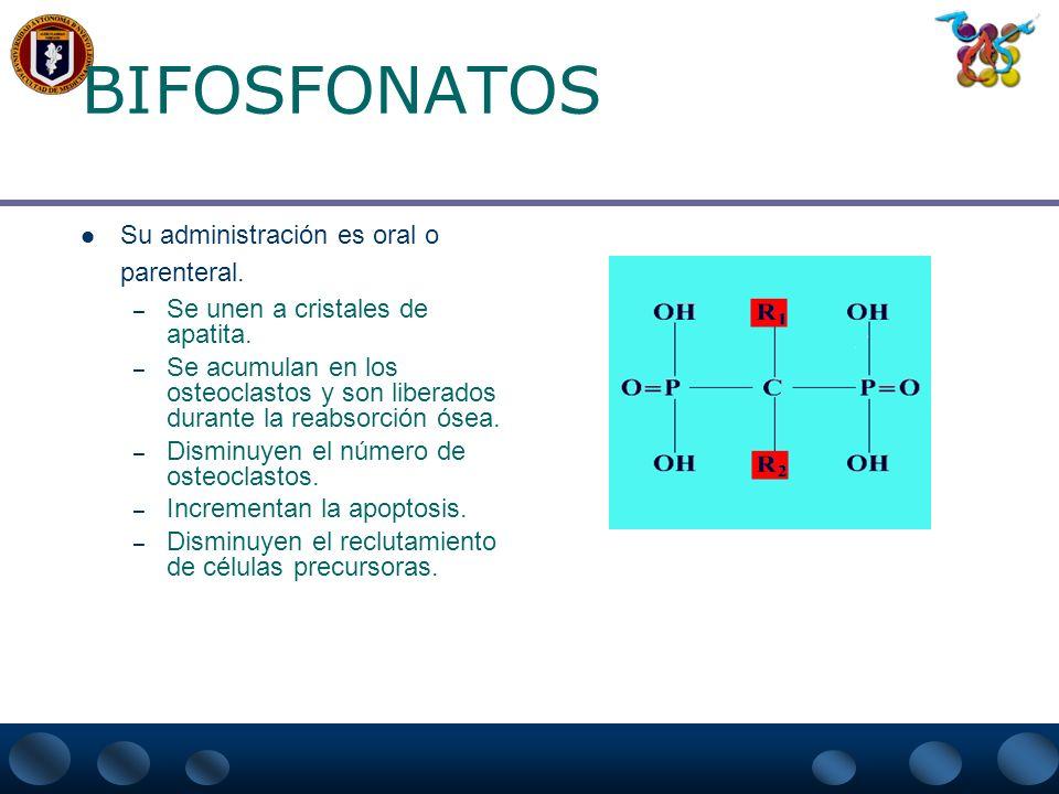 CALCITONINA NASAL: EVENTOS ADVERSOS MAS FRECUENTES EN LOS ESTUDIOS CLINICOS 6.9% 16.0% 2.3% 5.3% 4.6% 12.0% 10.6% 5.0% 3.8% 3.5% 3.2% Rinitis Síntomas