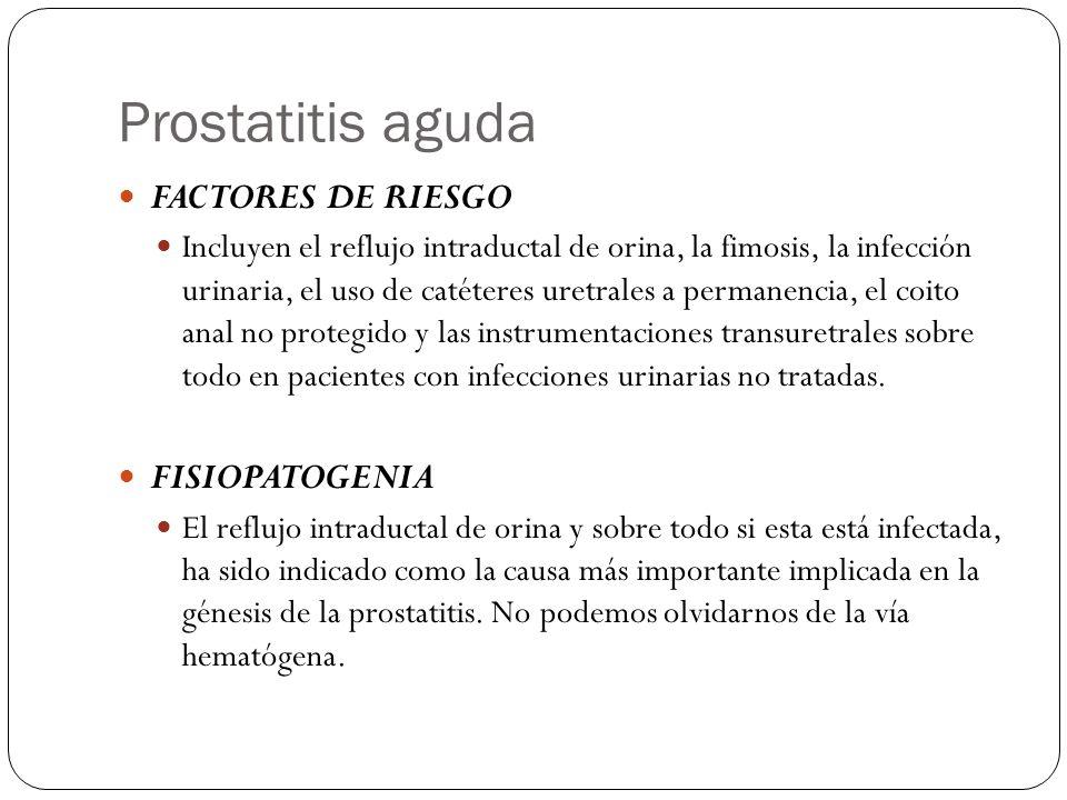 Prostatitis aguda FACTORES DE RIESGO Incluyen el reflujo intraductal de orina, la fimosis, la infección urinaria, el uso de catéteres uretrales a perm