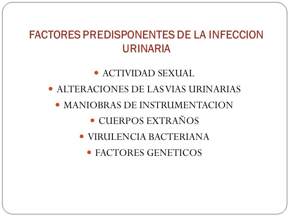 FACTORES PREDISPONENTES DE LA INFECCION URINARIA ACTIVIDAD SEXUAL ALTERACIONES DE LAS VIAS URINARIAS MANIOBRAS DE INSTRUMENTACION CUERPOS EXTRAÑOS VIR