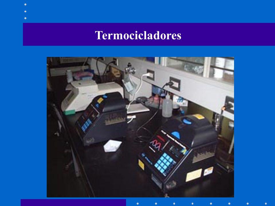 Termocicladores