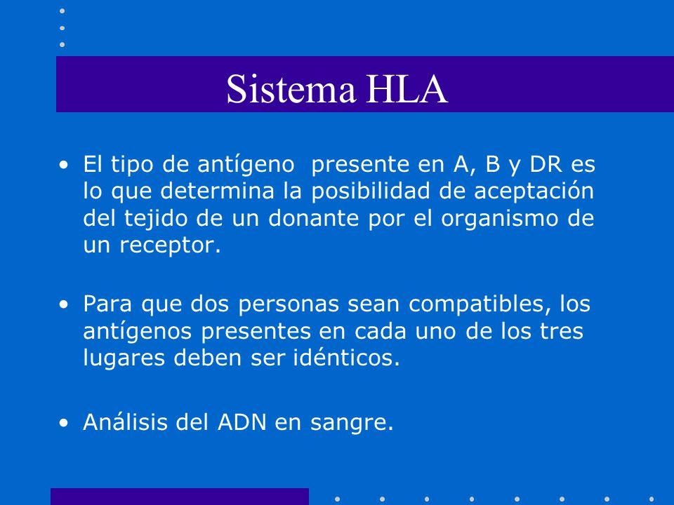 Sistema HLA El tipo de antígeno presente en A, B y DR es lo que determina la posibilidad de aceptación del tejido de un donante por el organismo de un