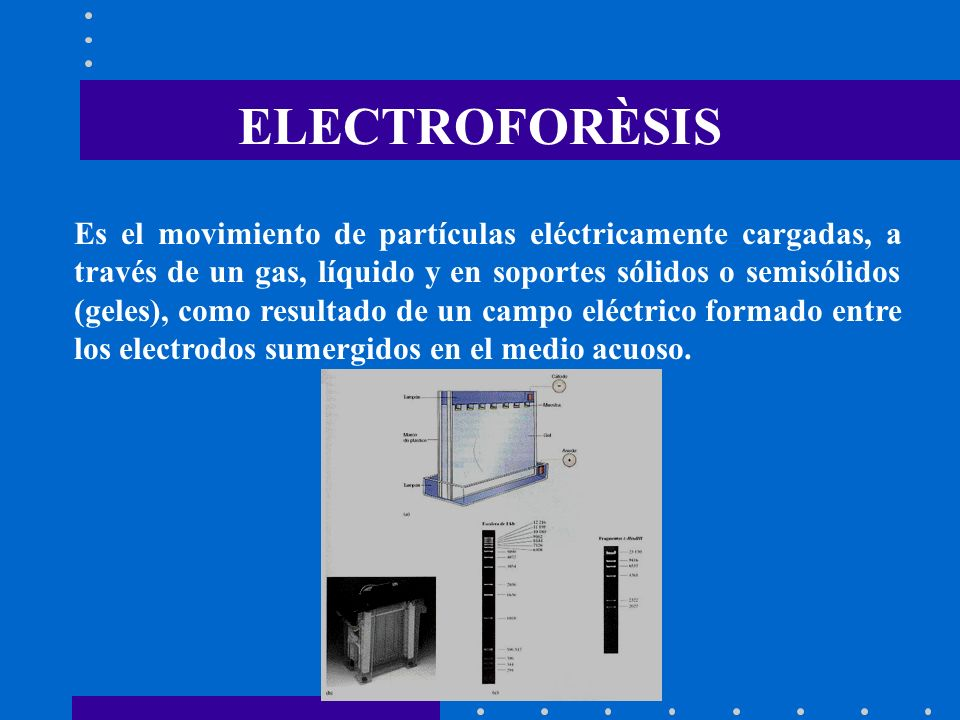 ELECTROFORÈSIS Es el movimiento de partículas eléctricamente cargadas, a través de un gas, líquido y en soportes sólidos o semisólidos (geles), como r