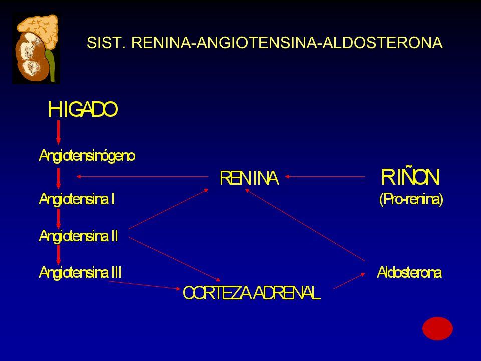 SIST. RENINA-ANGIOTENSINA-ALDOSTERONA