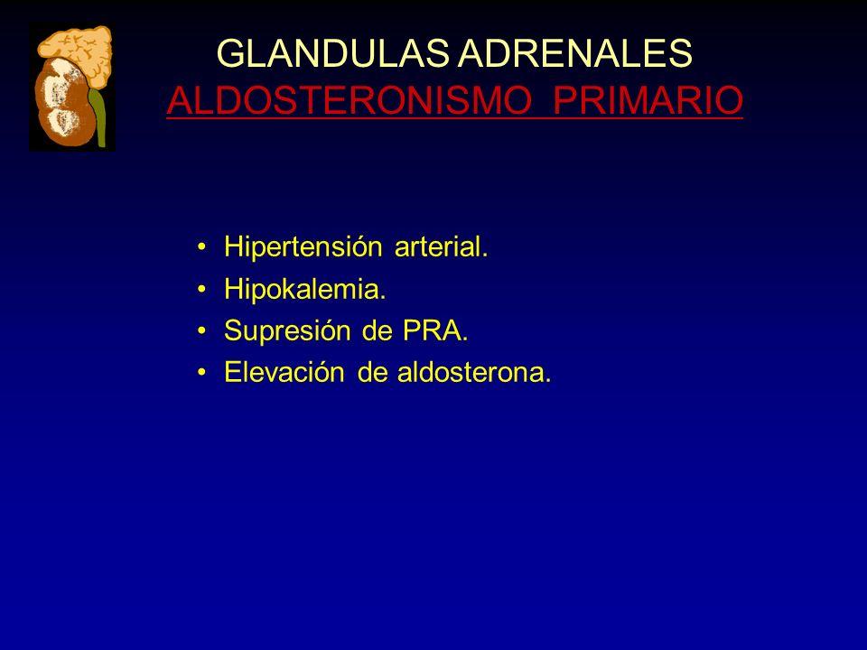 GLANDULAS ADRENALES ALDOSTERONISMO PRIMARIO Hipertensión arterial. Hipokalemia. Supresión de PRA. Elevación de aldosterona.