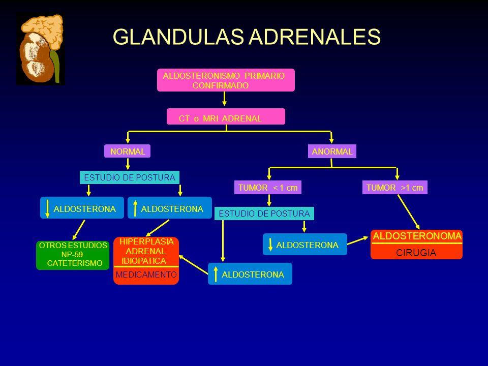 OTROS ESTUDIOS NP-59 CATETERISMO GLANDULAS ADRENALES ALDOSTERONISMO PRIMARIO CONFIRMADO CT o MRI ADRENAL NORMALANORMAL ESTUDIO DE POSTURA TUMOR < 1 cm
