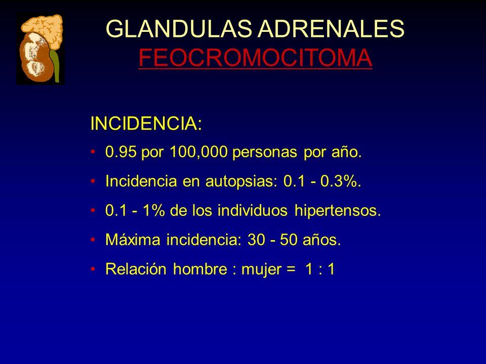GLANDULAS ADRENALES FEOCROMOCITOMA INCIDENCIA: 0.95 por 100,000 personas por año. Incidencia en autopsias: 0.1 - 0.3%. 0.1 - 1% de los individuos hipe