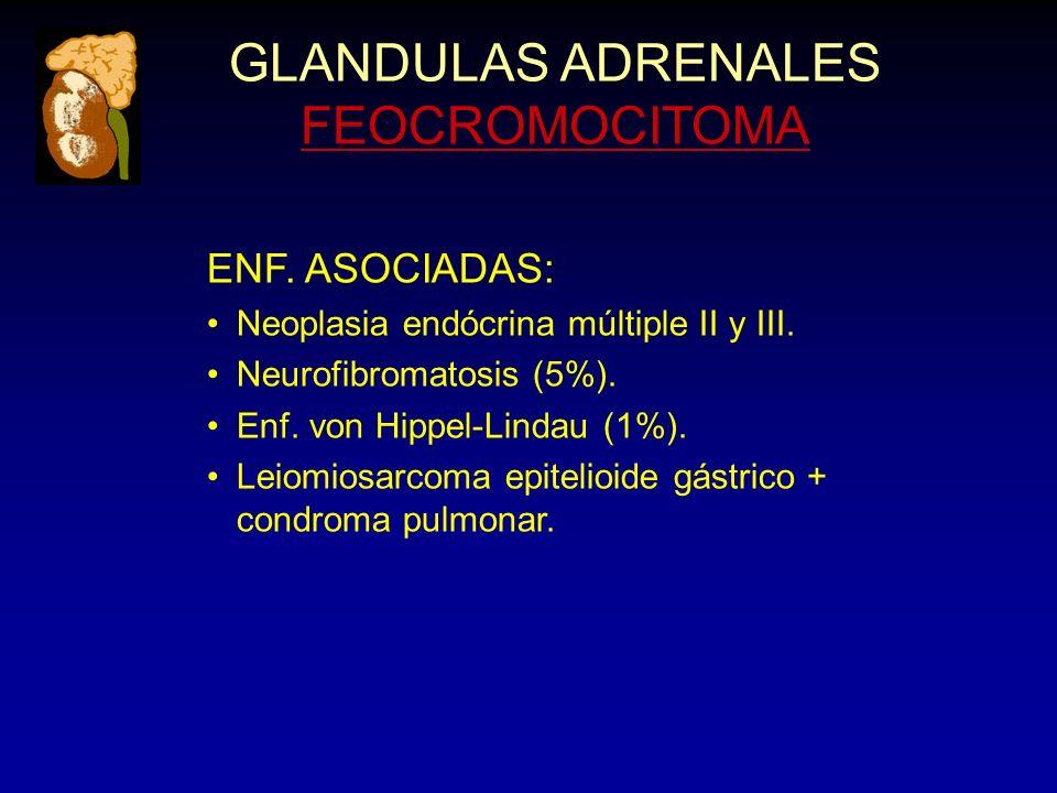 GLANDULAS ADRENALES FEOCROMOCITOMA ENF. ASOCIADAS: Neoplasia endócrina múltiple II y III. Neurofibromatosis (5%). Enf. von Hippel-Lindau (1%). Leiomio
