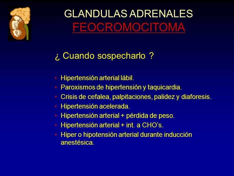 GLANDULAS ADRENALES FEOCROMOCITOMA ¿ Cuando sospecharlo ? Hipertensión arterial lábil. Paroxismos de hipertensión y taquicardia. Crisis de cefalea, pa