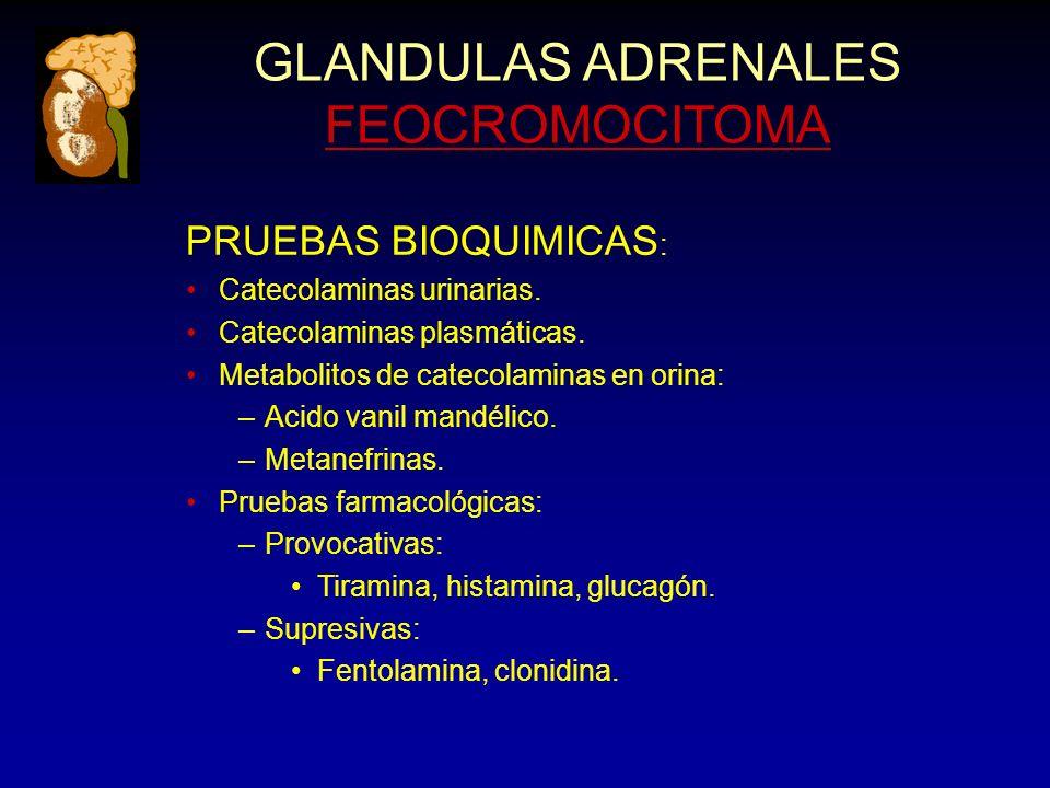 GLANDULAS ADRENALES FEOCROMOCITOMA PRUEBAS BIOQUIMICAS : Catecolaminas urinarias. Catecolaminas plasmáticas. Metabolitos de catecolaminas en orina: –A