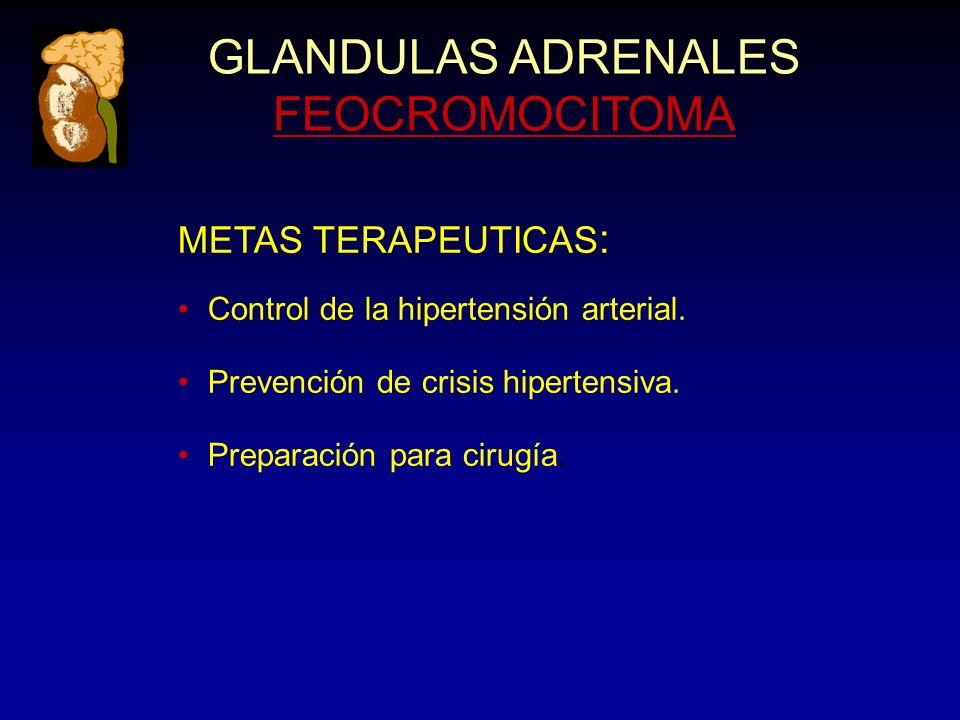 GLANDULAS ADRENALES FEOCROMOCITOMA METAS TERAPEUTICAS : Control de la hipertensión arterial. Prevención de crisis hipertensiva. Preparación para cirug