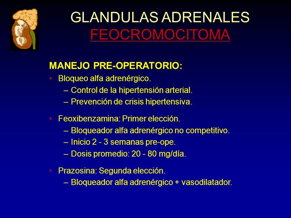 GLANDULAS ADRENALES FEOCROMOCITOMA MANEJO PRE-OPERATORIO: Bloqueo alfa adrenérgico. –Control de la hipertensión arterial. –Prevención de crisis hipert