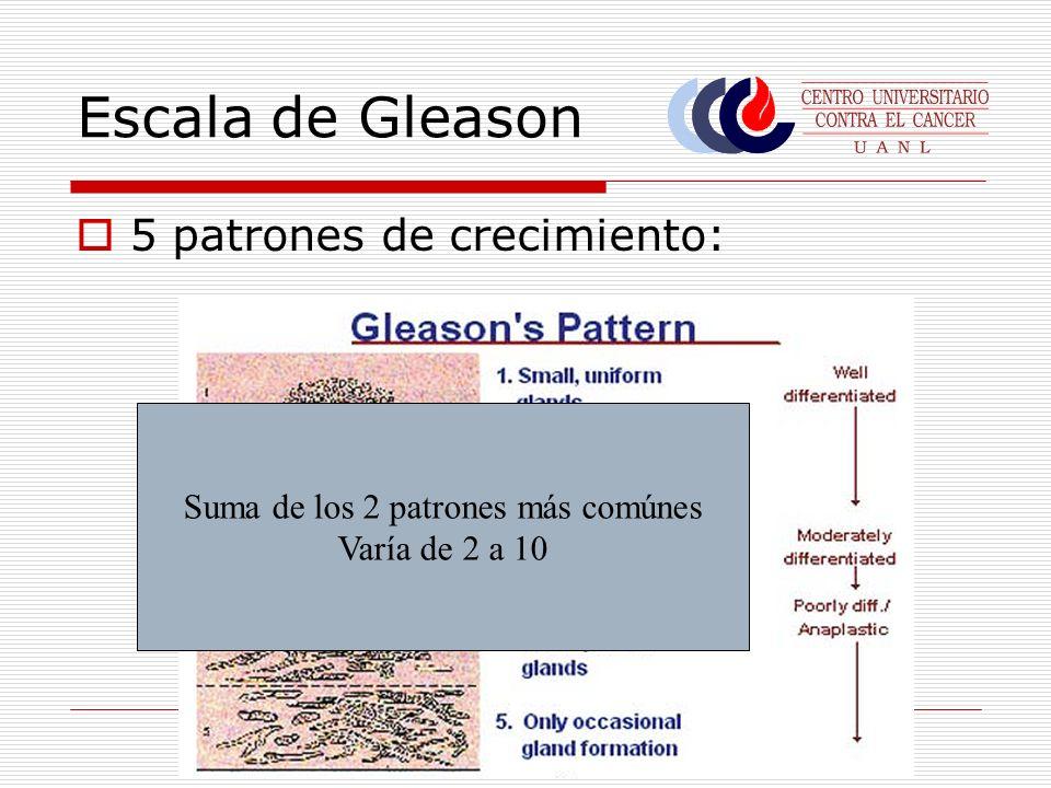 Escala de Gleason 5 patrones de crecimiento: Suma de los 2 patrones más comúnes Varía de 2 a 10
