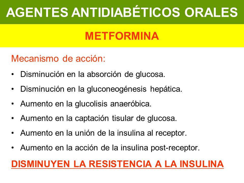Mecanismo de acción: Disminución en la absorción de glucosa. Disminución en la gluconeogénesis hepática. Aumento en la glucolisis anaeróbica. Aumento