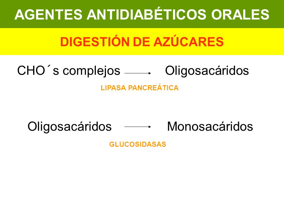 CHO´s complejos Oligosacáridos Oligosacáridos Monosacáridos AGENTES ANTIDIABÉTICOS ORALES DIGESTIÓN DE AZÚCARES LIPASA PANCREÁTICA GLUCOSIDASAS