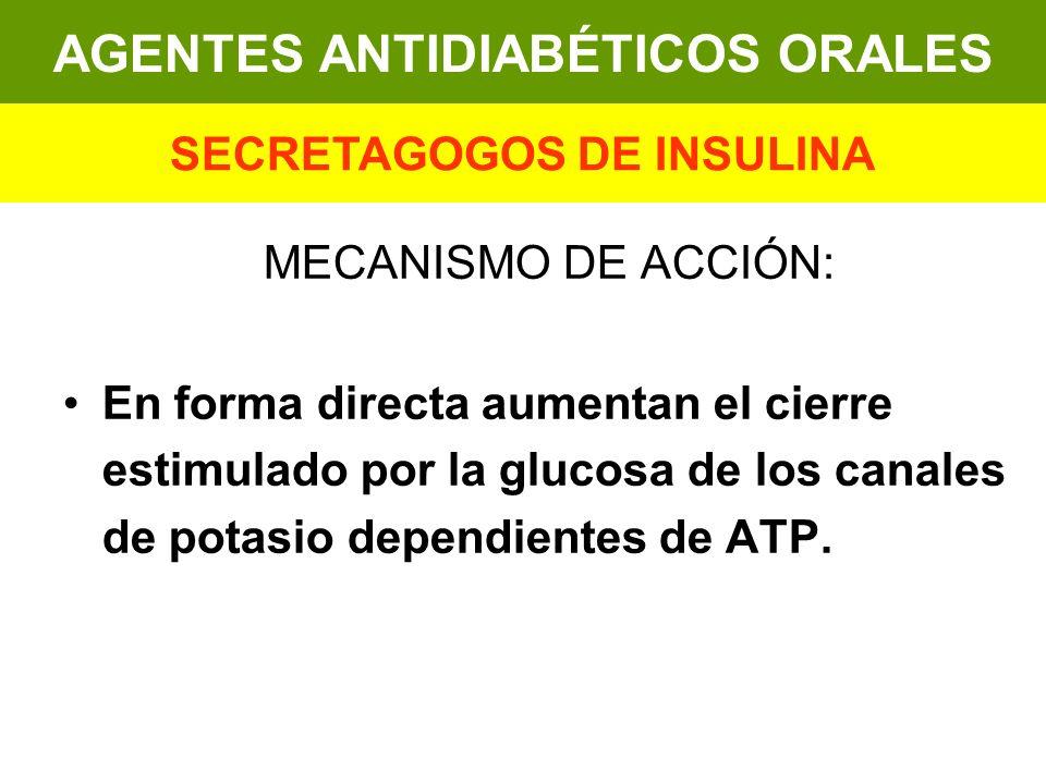 MECANISMO DE ACCIÓN: En forma directa aumentan el cierre estimulado por la glucosa de los canales de potasio dependientes de ATP. AGENTES ANTIDIABÉTIC