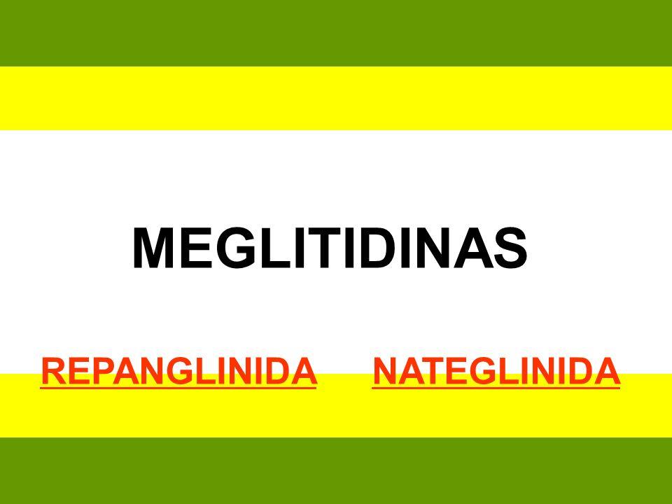 MEGLITIDINAS REPANGLINIDA NATEGLINIDA