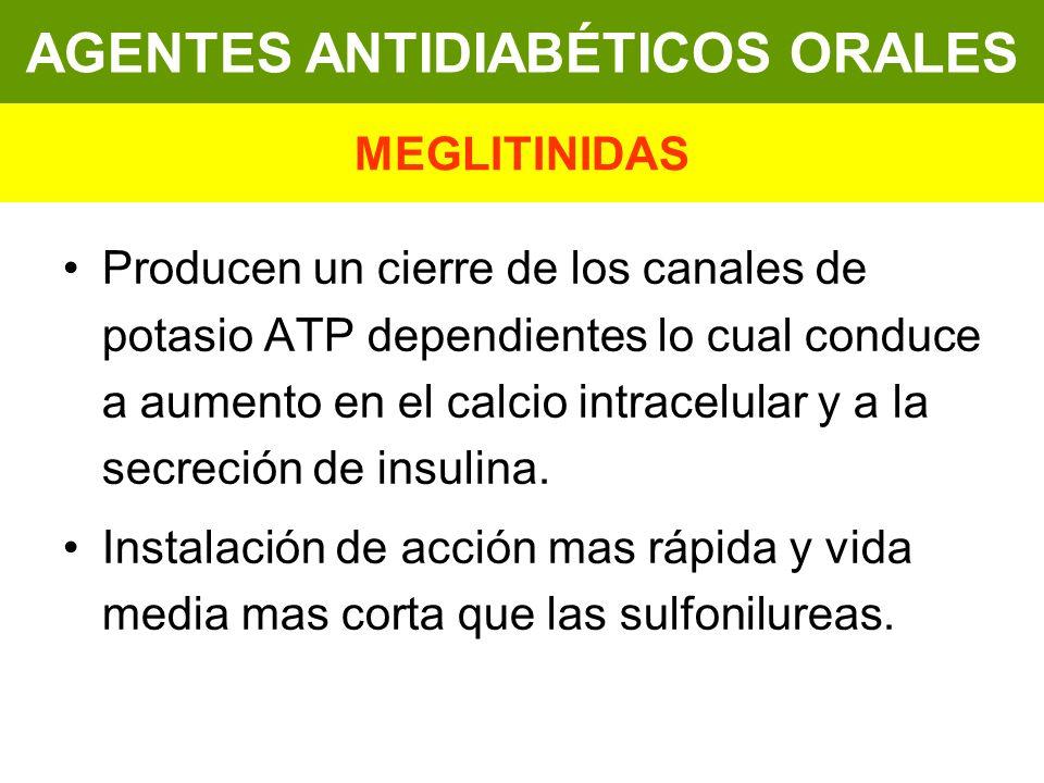 Producen un cierre de los canales de potasio ATP dependientes lo cual conduce a aumento en el calcio intracelular y a la secreción de insulina. Instal