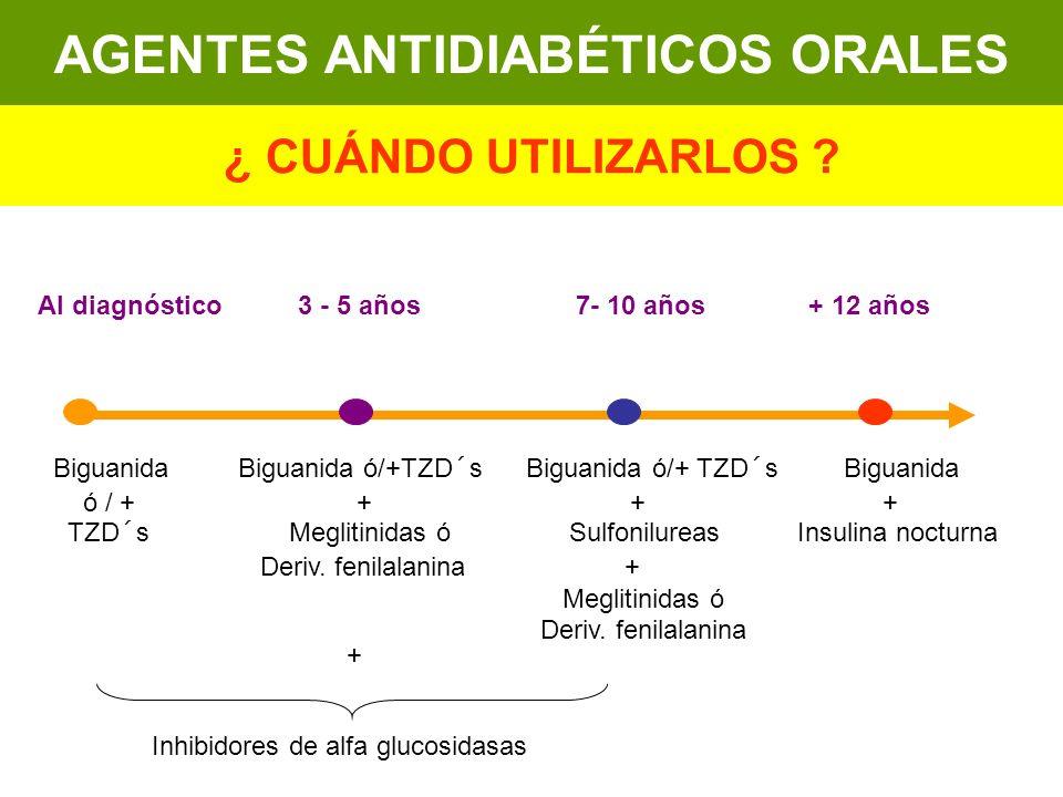 Al diagnóstico3 - 5 años 7- 10 años + 12 años Biguanida Biguanida ó/+TZD´s Biguanida ó/+ TZD´s Biguanida ó / + + + + TZD´s Meglitinidas ó Sulfonilurea