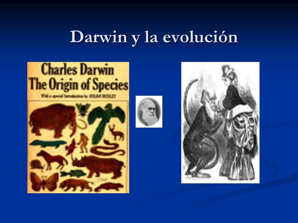Mutación Cualquier cambio en la secuencia del ADN que es heredableCualquier cambio en la secuencia del ADN que es heredable Tipos de mutación: Positivas EvoluciónPositivas Evolución NeutrasNeutras Negativas Enfermedad.Negativas Enfermedad.Arch.argent.pediatr2001;99(4)/375