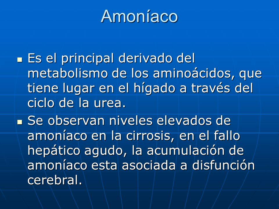 Amoníaco Es el principal derivado del metabolismo de los aminoácidos, que tiene lugar en el hígado a través del ciclo de la urea. Es el principal deri