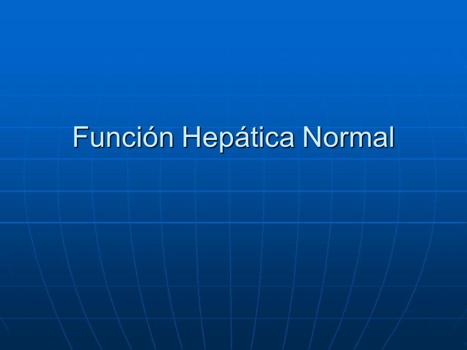 Función Hepática Normal