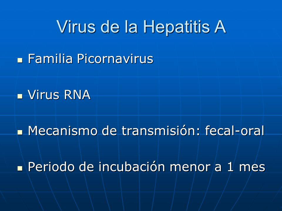 Virus de la Hepatitis A Familia Picornavirus Familia Picornavirus Virus RNA Virus RNA Mecanismo de transmisión: fecal-oral Mecanismo de transmisión: f