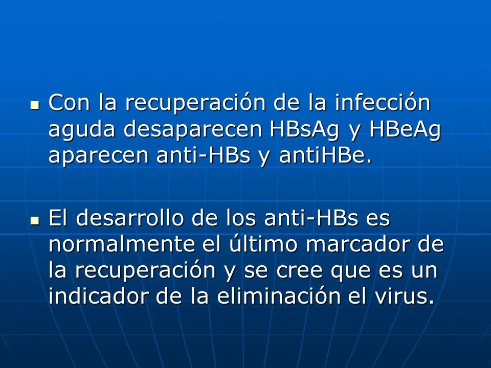 Con la recuperación de la infección aguda desaparecen HBsAg y HBeAg aparecen anti-HBs y antiHBe. Con la recuperación de la infección aguda desaparecen