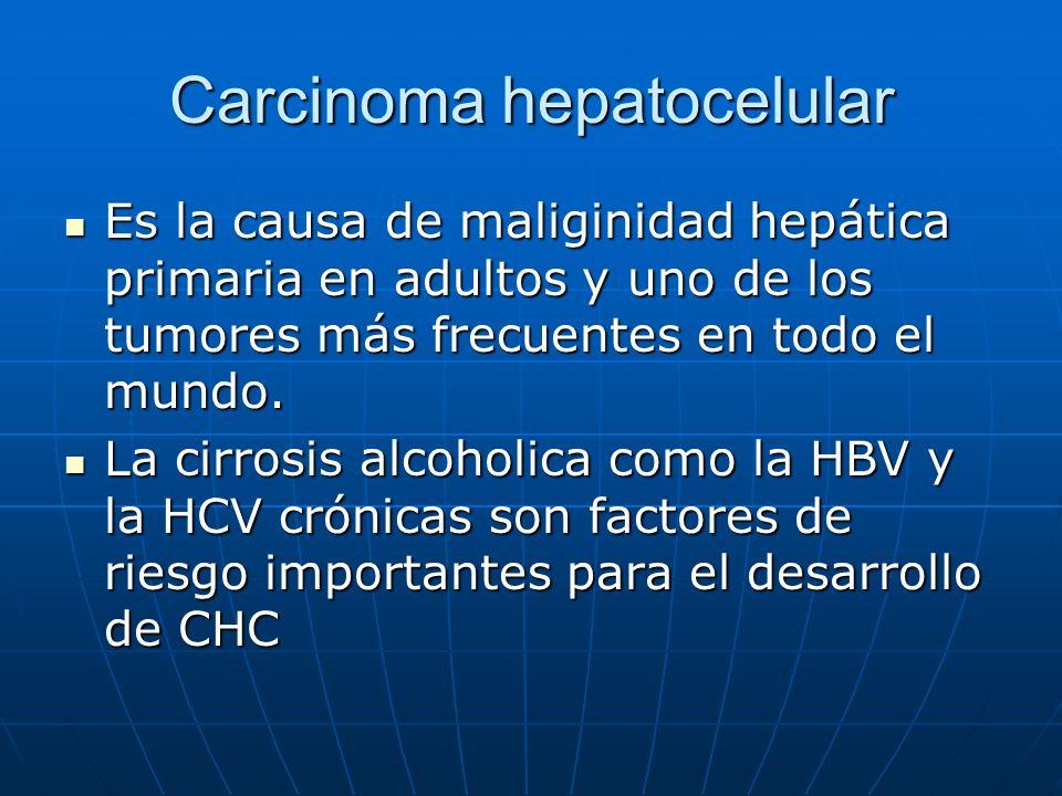 Carcinoma hepatocelular Es la causa de maliginidad hepática primaria en adultos y uno de los tumores más frecuentes en todo el mundo. Es la causa de m