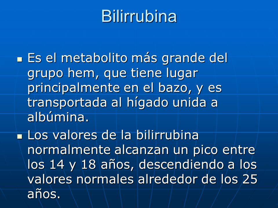 Bilirrubina Es el metabolito más grande del grupo hem, que tiene lugar principalmente en el bazo, y es transportada al hígado unida a albúmina. Es el