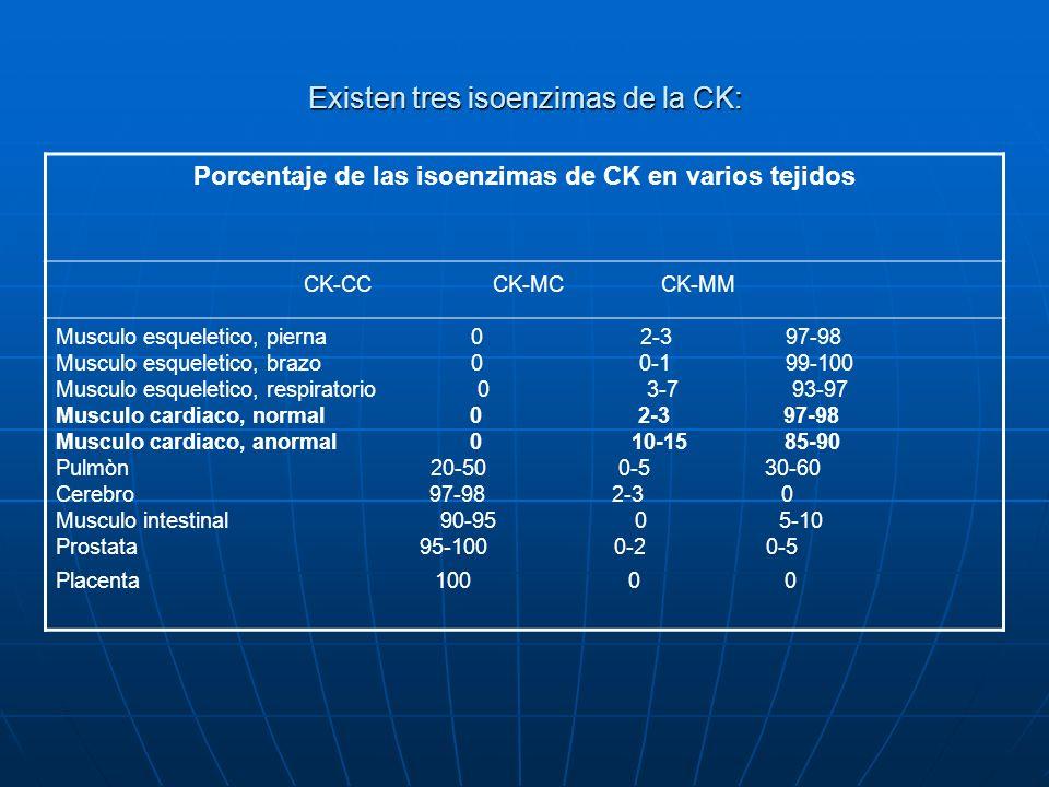Existen tres isoenzimas de la CK: Porcentaje de las isoenzimas de CK en varios tejidos CK-CC CK-MC CK-MM Musculo esqueletico, pierna 0 2-3 97-98 Muscu