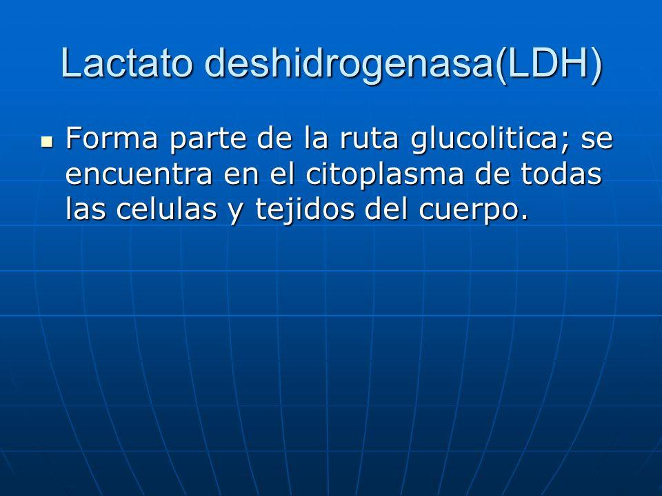 Lactato deshidrogenasa(LDH) Forma parte de la ruta glucolitica; se encuentra en el citoplasma de todas las celulas y tejidos del cuerpo. Forma parte d